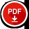 pdf file1